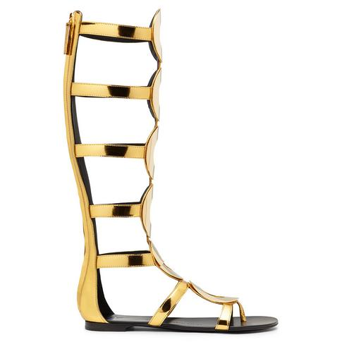 Footware designer shoe