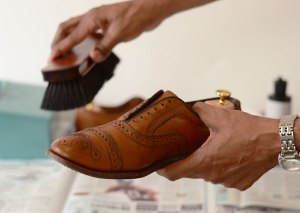 Shoes polish brush