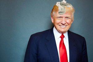 Donald Trump Hair Socks